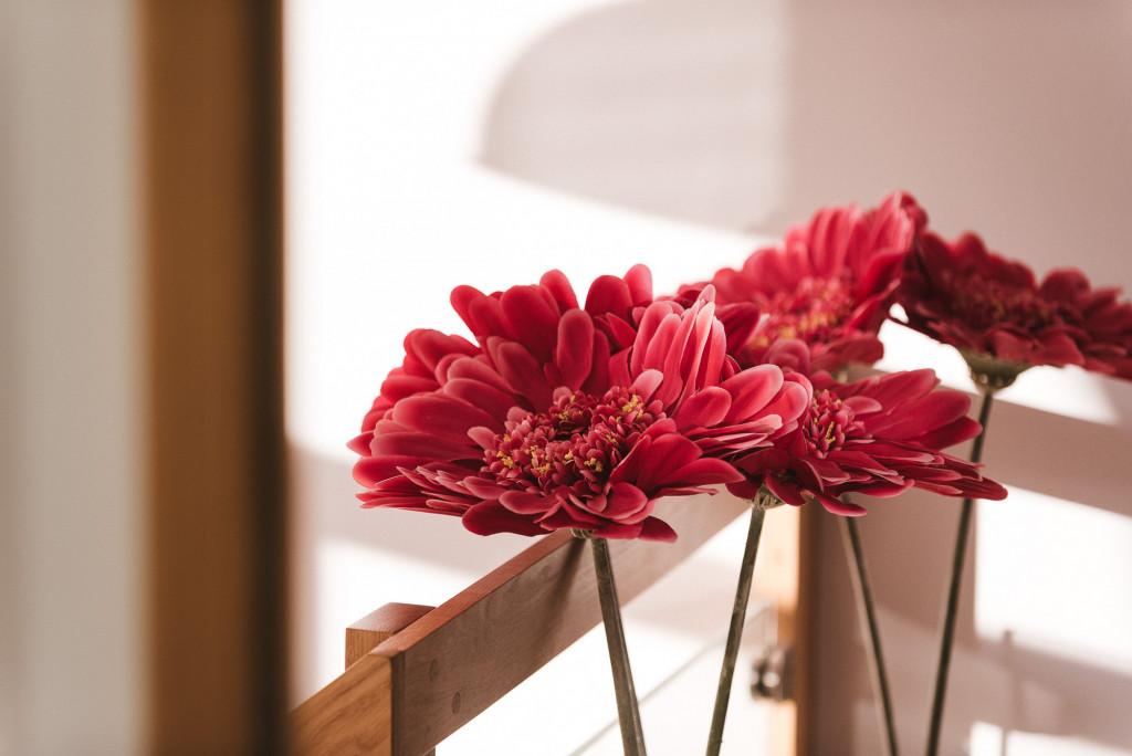 Des fleurs rouges à la clinique de la femme